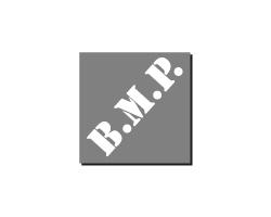 BMP - Portfolio Togo Web agenzia marketing Alba - aziende di successo